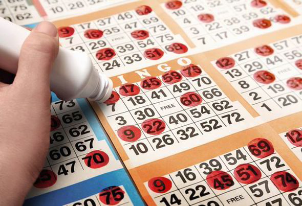 Guidelines to help you choose an online bingo site in UK